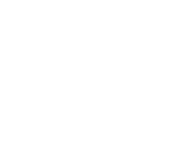 We Build Irresistible Brands